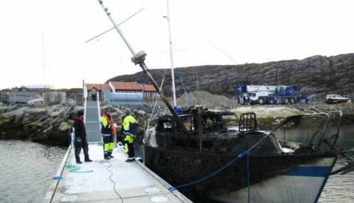 Storbrann i Alta båthavn