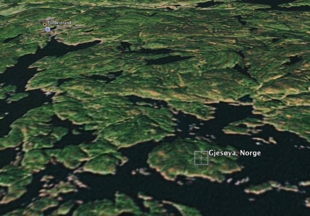 RIB-en kjørte på lille Bastholmen øst for Gjesøya utenfor Tvedestrand.Foto: Google Earth