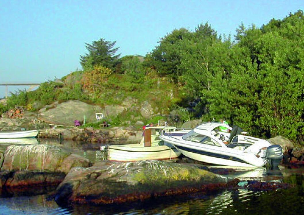 Tre ukers fengsel for båteier