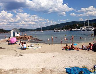 Fulltegnet trebåtfestival