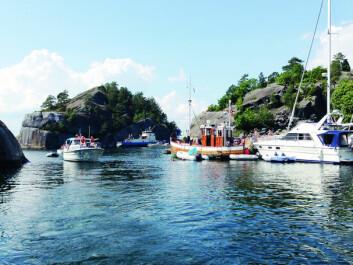 DRØMMESOMMER: Det fantastiske været i sommer satte fart i båtsalget. Foto: Linn Krogh Hansen