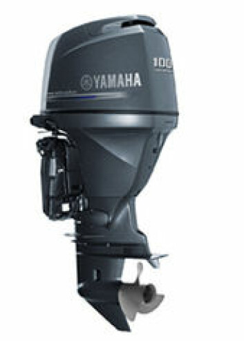 Yamaha F100D