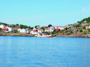 LEVENDE KYSTKULTUR: Sogndalstrand. Foto: Nils Jacobsen