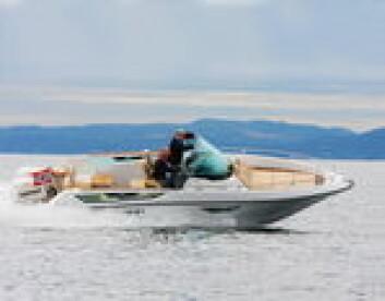 LEKKER, NORSK DESIGN: Nordkapp Enduro 760 er nesten litt unorsk og kan minne litt om Sessa og andre designbåter.