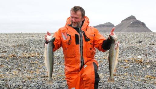 Ror 200 nautiske mil på Spitsbergen