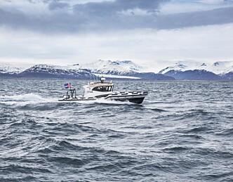 RIB-tur fra Island