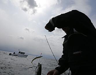 Digital fiskelykke