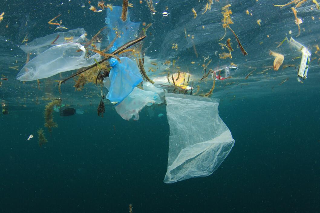 FYLLES OPP: Havet fylles opp av plast og estimatene går ut på at dersom vi fortsetter som vi stevner, vil det være mer plast i havet enn det er fisk. Forbruket av plast må reduseres. Foto: Rick Carey/Shutterstock