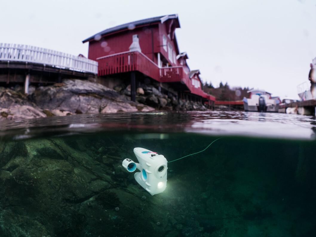 BLUEYE TESTES: Utforskning fra flytebrygga på Kvenær.