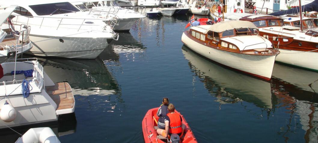 Hva er viktig båt-politisk for deg?
