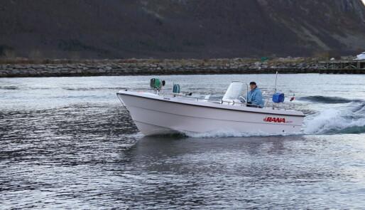 Arbeidshest på sjøen
