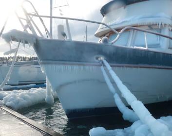 IS: Bølger slår over brygga i Vollen og havner som is på båtene som ligger mest utsatt til.