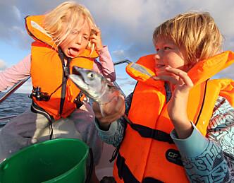 Slik får du fiskelykke i sommer
