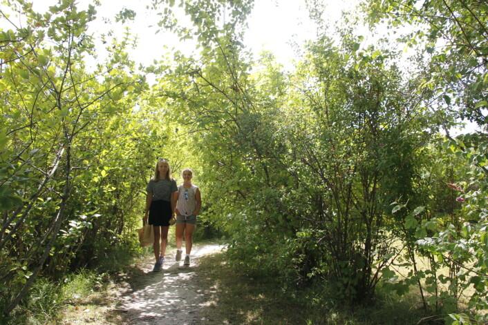 VEIER: Sandøya er bilfri, og blir derfor ekstra idyllisk å gå rundt.