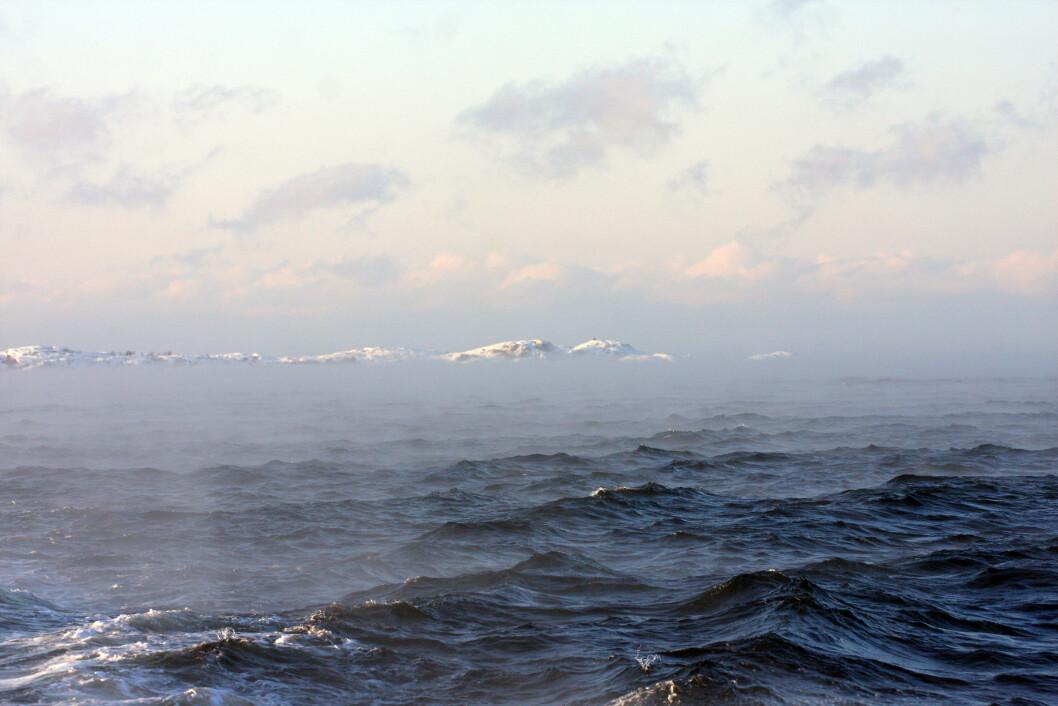 KALDT: Vinden kan gjøre de effektive kuldegradene tøffere enn hva gradestokken tilsier.