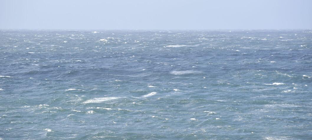 Her får du bølgevarsel for båtturen