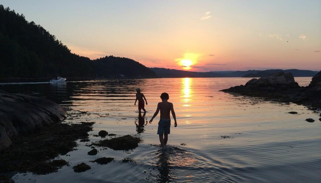 Norge byr på mange flotte naturhavner, her ved Sætre i Oslofjorden.