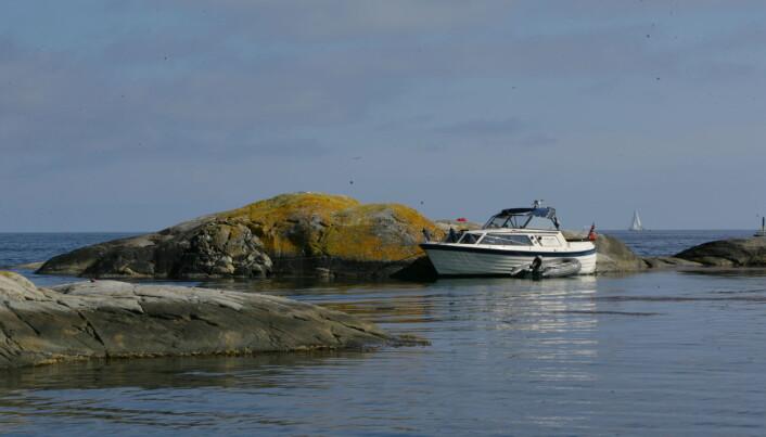 LES OGSÅ: Seks rimelige familiebåter