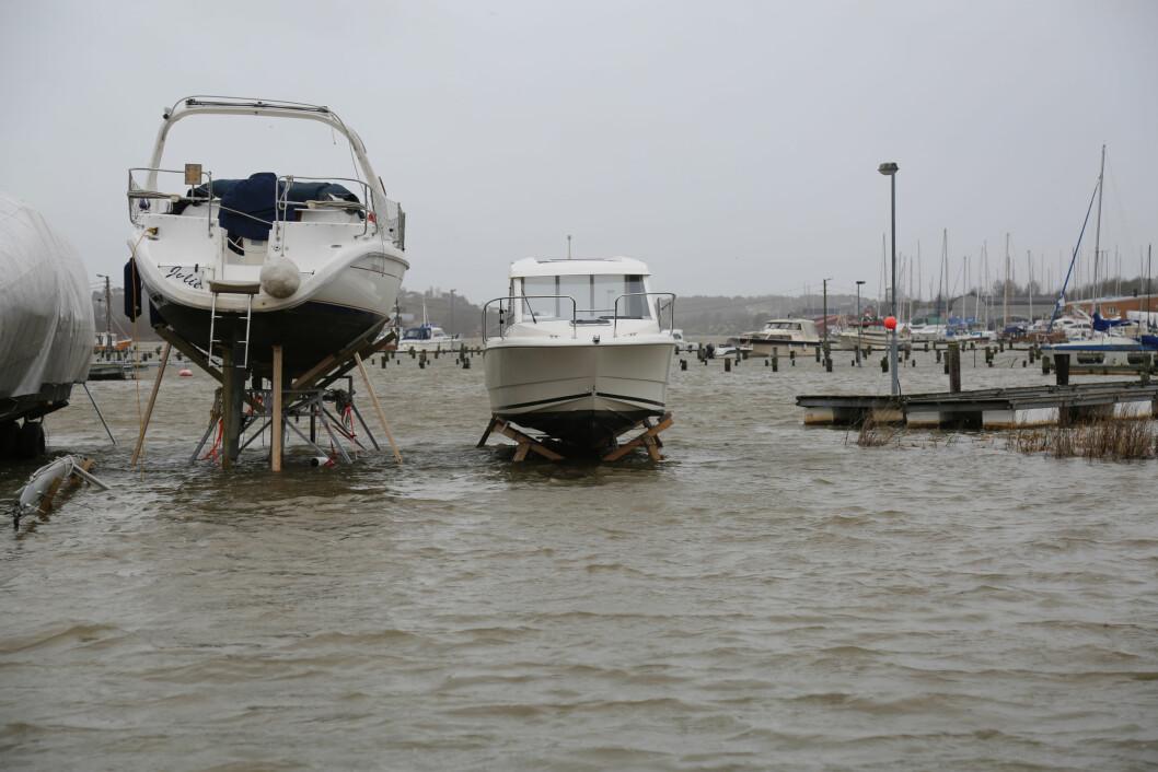 STORMFLO: Fjellberg båthavn i Fredrikstad var det stormflo og nesten ny