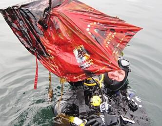 Kunstige fiskerev skal gi nytt liv