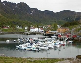 Kommune vil ha avgift på fritidsbåter