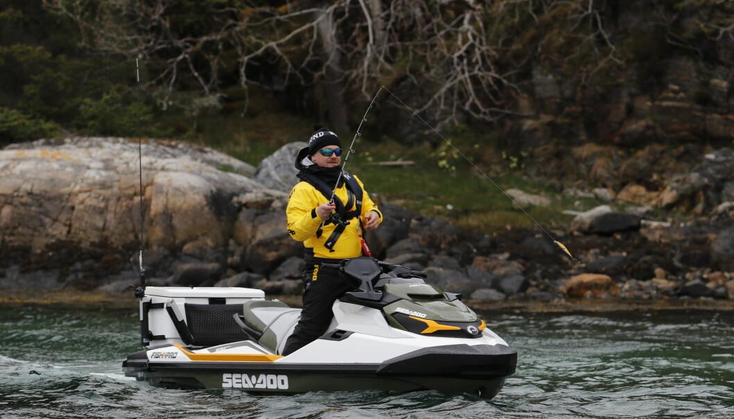 JAKTEN PÅ SJØØRRETEN: Trikset er å fiske mot land.