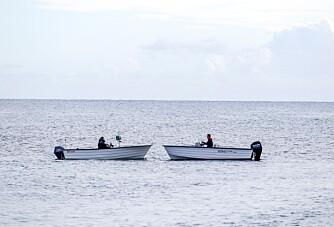 Storselgerne Øien 530 og Sting 535 Pro i duell