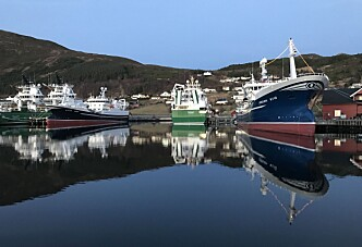 Vintertanker i Havlandet
