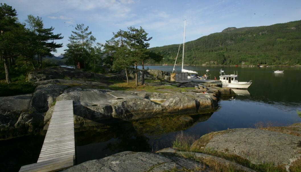 TILRETTELAGT: På Skadholmen og Bergaholmen i Økstrafjorden er har Ryfylke Friluftsråd tilrettelagt et nydelig område.