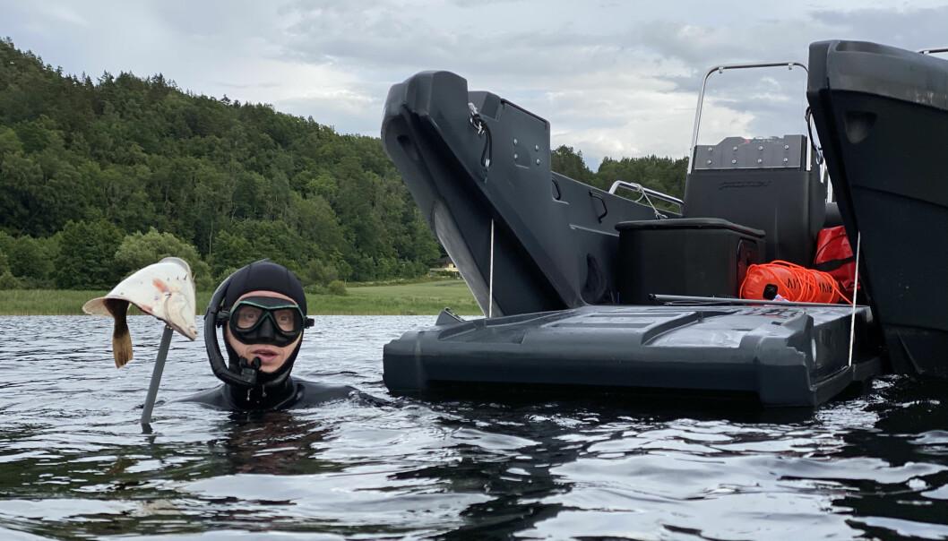 MULTI: Pioner 17 Multi er en svært funksjonell transportbåt som tåler mye last og har mange bruksområder.