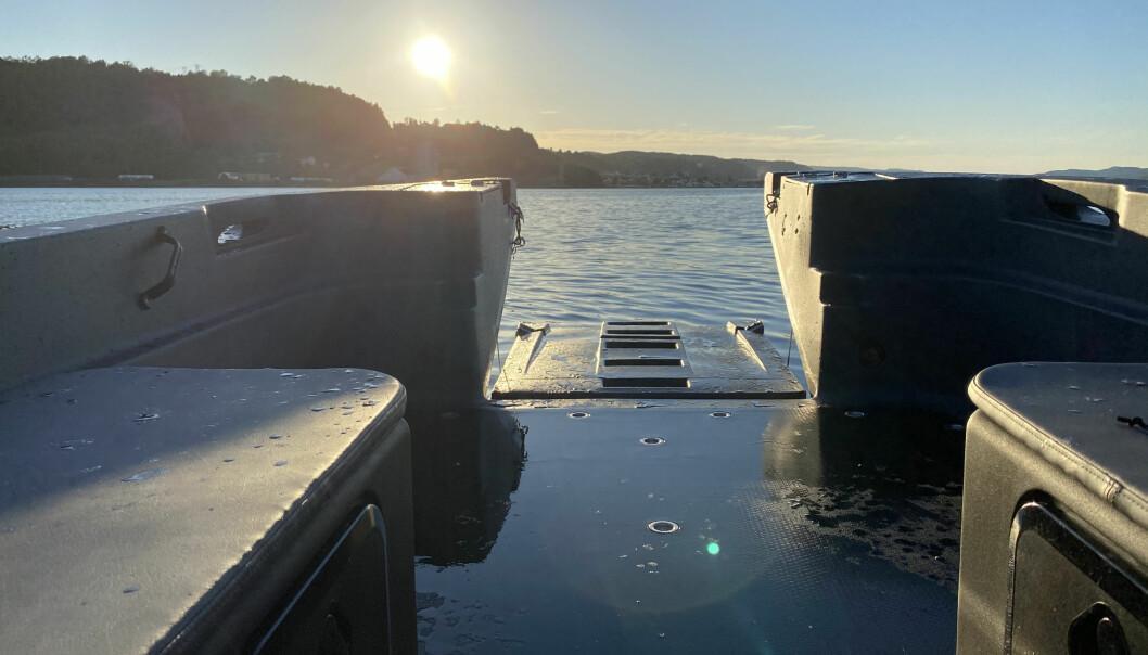 BADEBRYGGE: Med bauglemmen nede er det enkelt å komme seg ut i vannet.